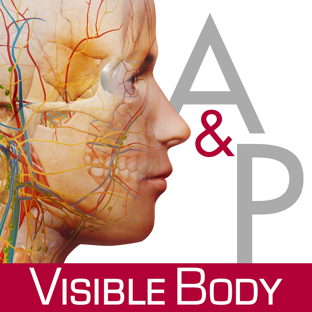 Visible Body For Iphone 44s 3d Human Anatomy Atlas Iphone Medical
